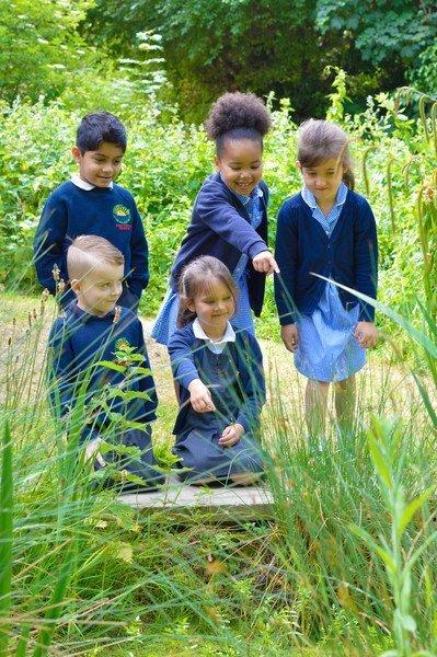 Children studying pond life